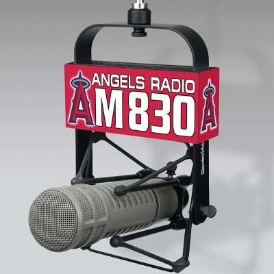 Angels mic flag