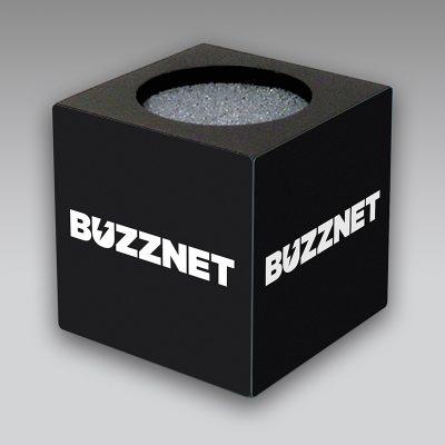 Buzznet mic flag