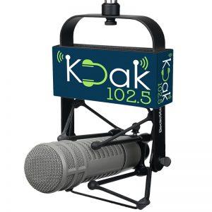KDAK Studio Mic Flag used with EV 309 shock mount